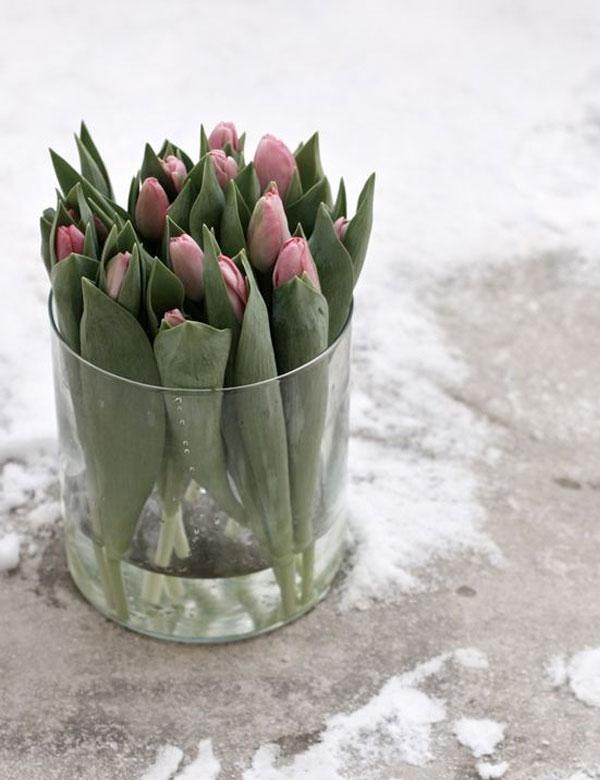 Hello February! | My Cosy Retreat