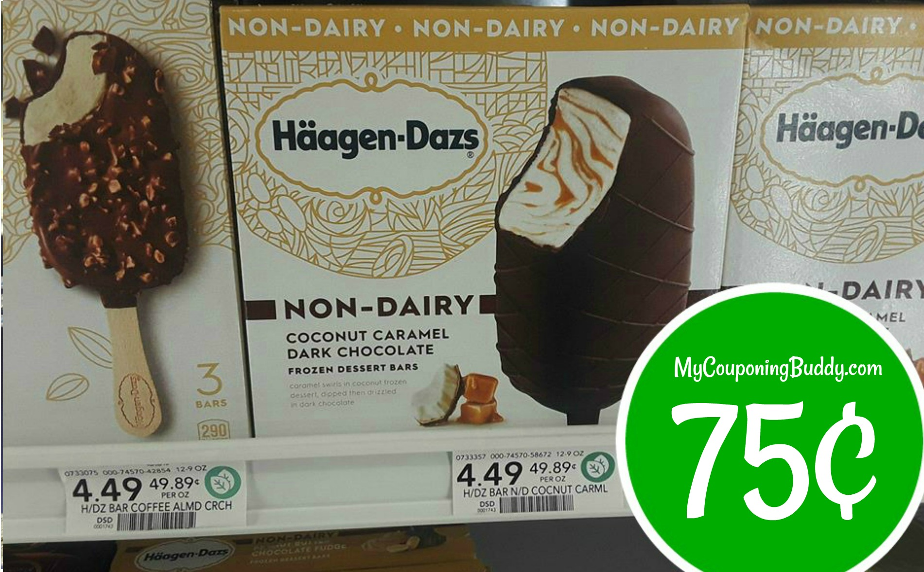 picture about Haagen Dazs Printable Coupon named Haagen-Dazs Ice Product 75¢ at Publix My Publix Coupon Mate