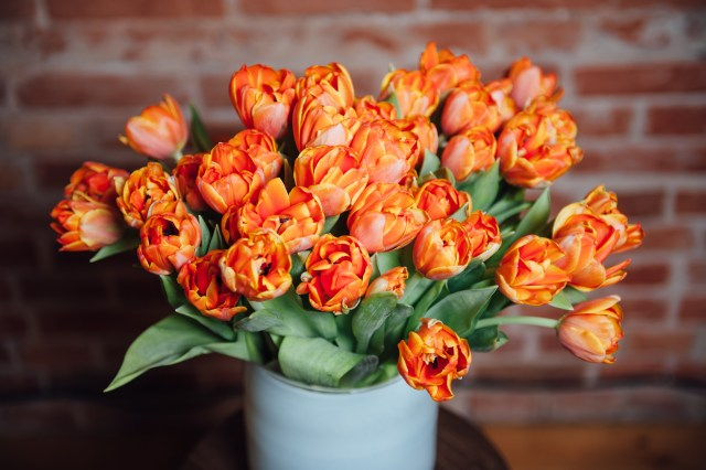 Lovely Bouquet of Tulips
