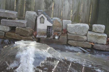 Frozen Koi Pond