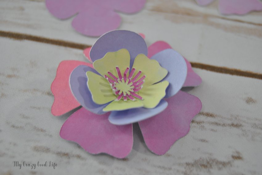 How to Make Cricut Paper Flowers   Cricut Paper Crafts   My Crazy     Learning how to make a paper flower can be tricky  Luckily these Cricut paper  flowers