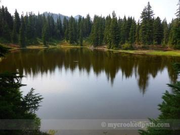 Fish rings on Mig Lake