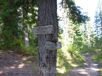 How many trails converge here?!