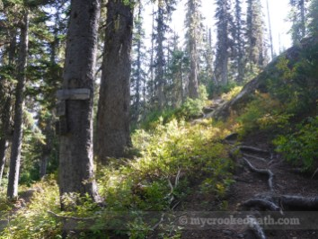 Now this is the kind of trail I'm used to