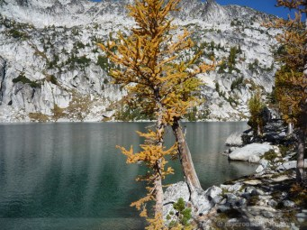 Enchantments_MCP_912
