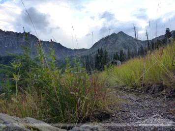Trail shot