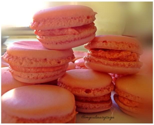 Strawberry Macaron (1)