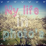 My life in photo's