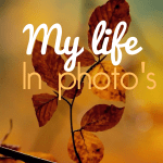 My life in photo's – november