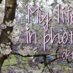 My life in photo's – oktober #1