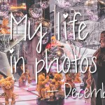My life in photos – december 2018 #1