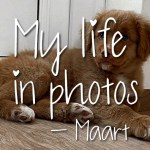 My life in photos – maart 2021 #4