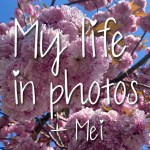 My life in photos – mei 2021 #1