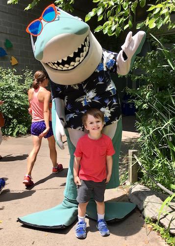 happy shark with kid