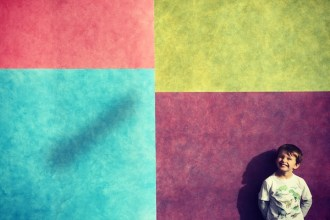 carnegie colors