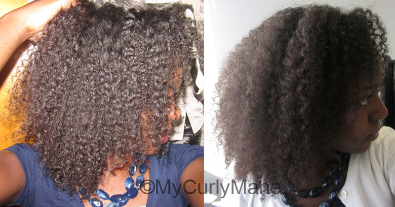 How To Use Amp Choose Oils My Curly Mane Natural Hair
