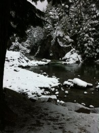 Snowshoeing by the creek