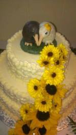 Katherine's Kiwi Bird Cake Topper