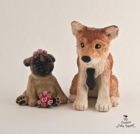 Shiba Inu And Pug