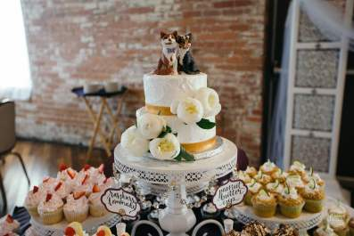 Time and Maryn Custom Cat Wedding Cake