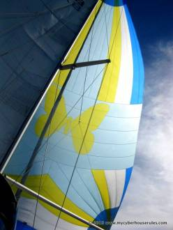 Our beautiful spinnaker in all its majesty