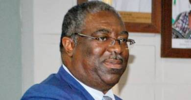 Ex Executive Chairman Federal Inland Revenue Service Babatunde Fowler