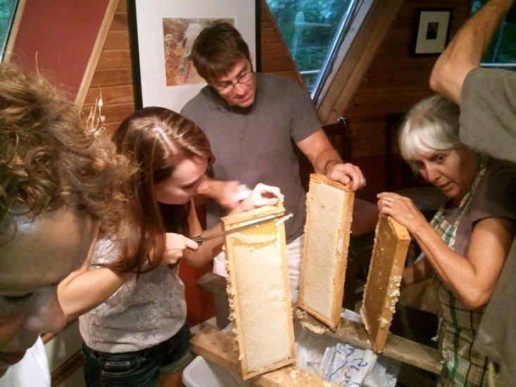 terry-honey-harvest