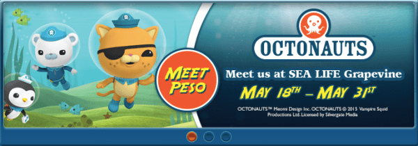 sea life grapevine giveaway 4 tickets octonauts are coming my dallas mommy. Black Bedroom Furniture Sets. Home Design Ideas