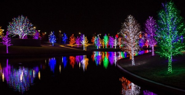 vitruvian park addison addison flips the switch to turn on their christmas light display more than 500 trees will light up the night on this 12 acre
