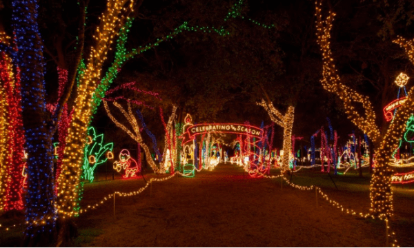 groupon save 25 off local deals prairie lights drive thru only