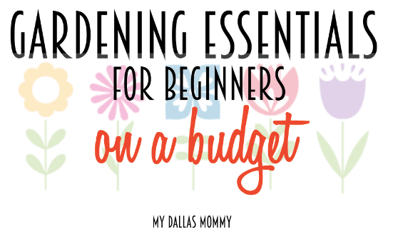 Gardening Essentials for beginners on a budget
