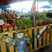 Fort Worth & Dallas Farmer's Markets