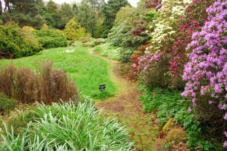 Sunken garden in spring