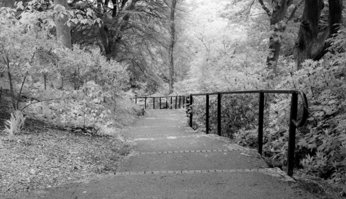 Infra-red style pathway