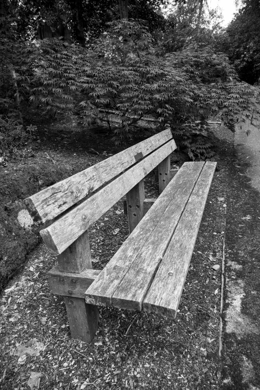 One of many benches in the Explorer's Garden