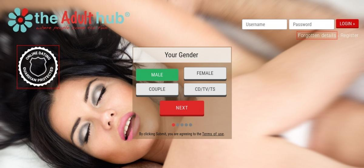 the adult hub dating website review