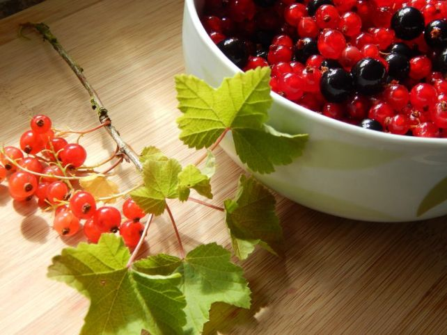 Redcurrant and blackcurrants