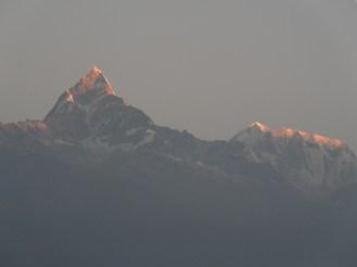 PokharaNPL (211)