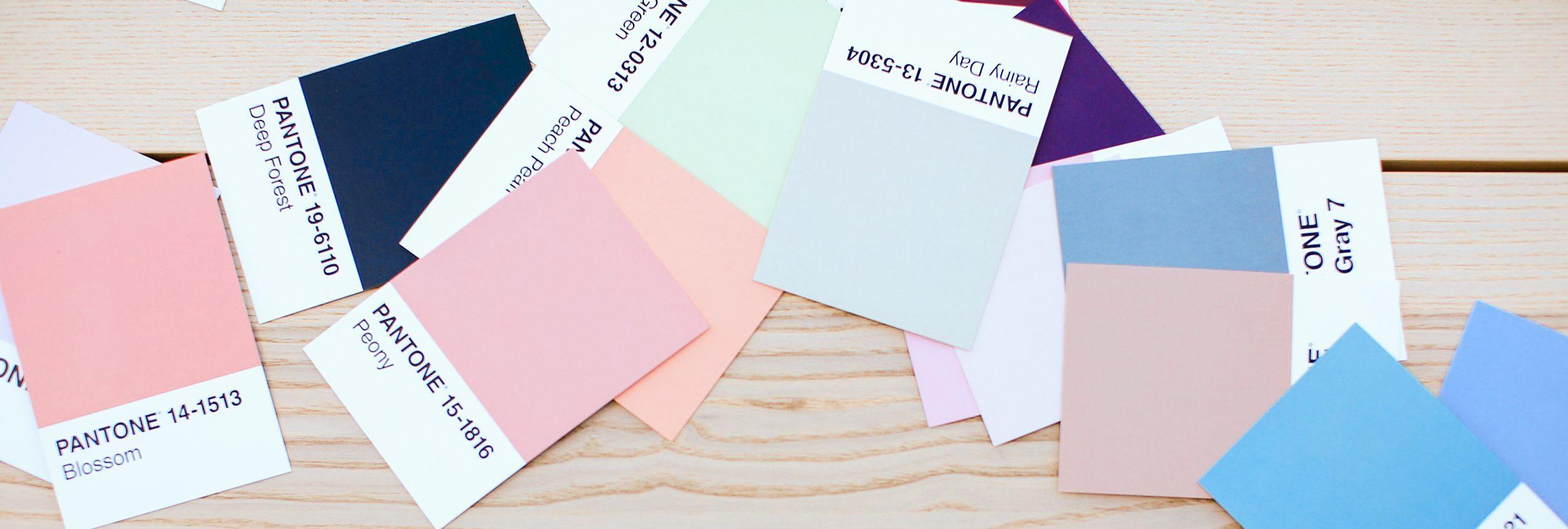 Interior Designer Sydney Colour