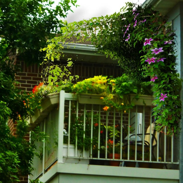green balcony ideas11