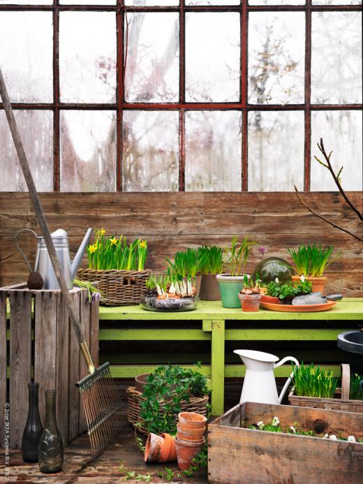 inspiration ideas for home and garden2