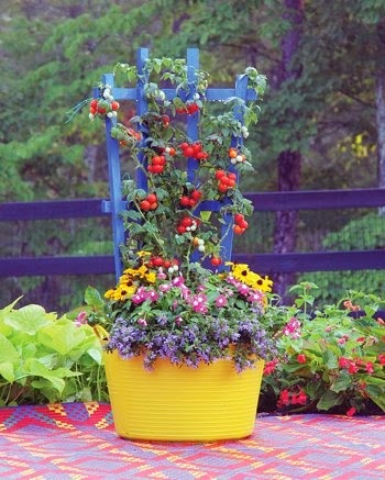 Ideas for small gardens - Balconies2