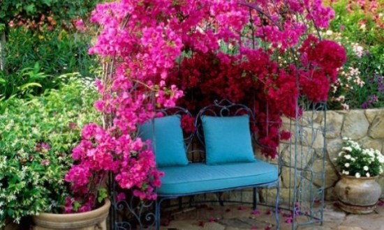 colorful garden ideas1