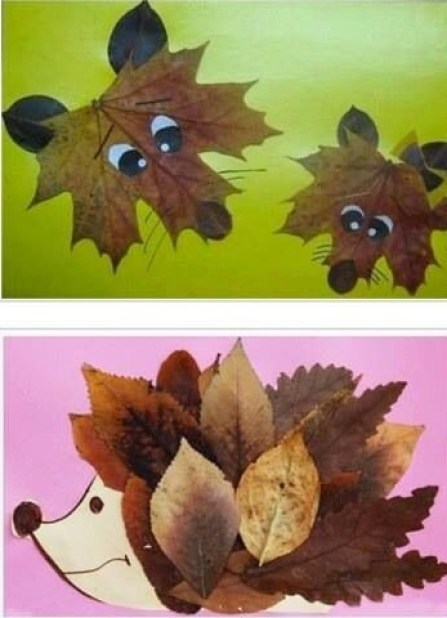 collages-of-dried-leaves