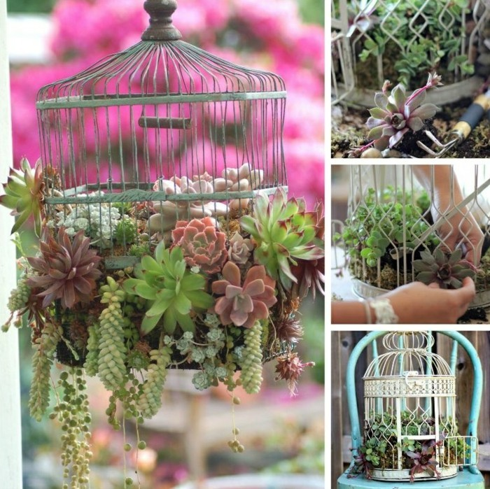 garden decorating ideas (4)