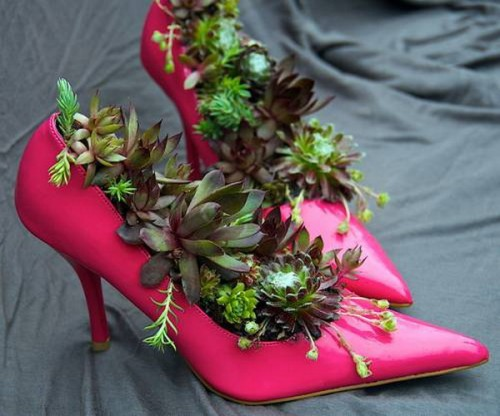 deco with succulents19