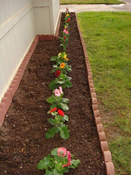 flower beds ideas4