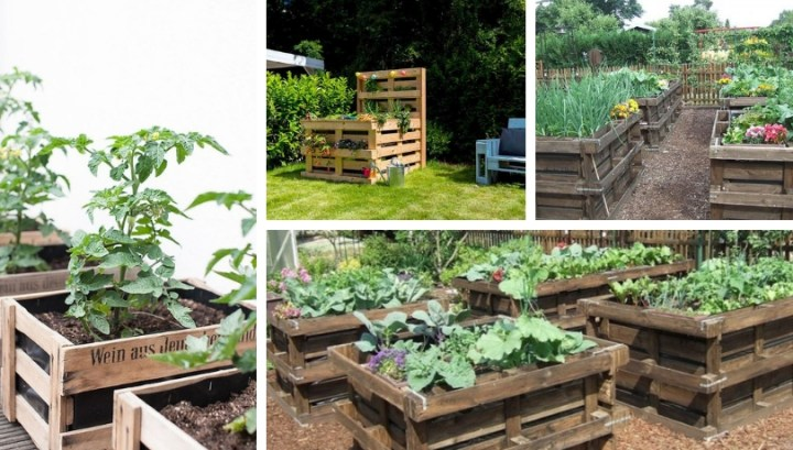 How To Make Most Amazing Square Diy Vegetable And Flower Beds With