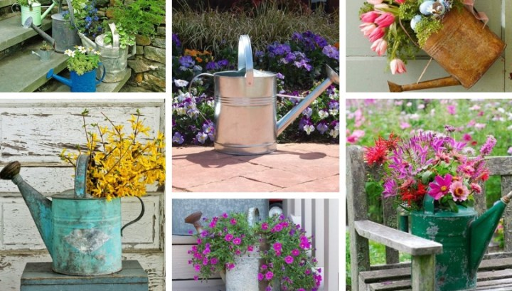 DIY ideas: Amazing Ways to reuse a metal watering can in your home and garden