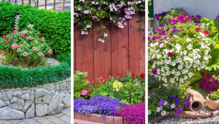 15 Inspiration ideas for a beautiful spring flowering garden
